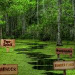 The Gender Swamp